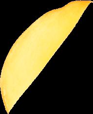ingenious-brewing-company-humble-texas-home-mango-creamsicle-doouble-froyo-ipa-mango